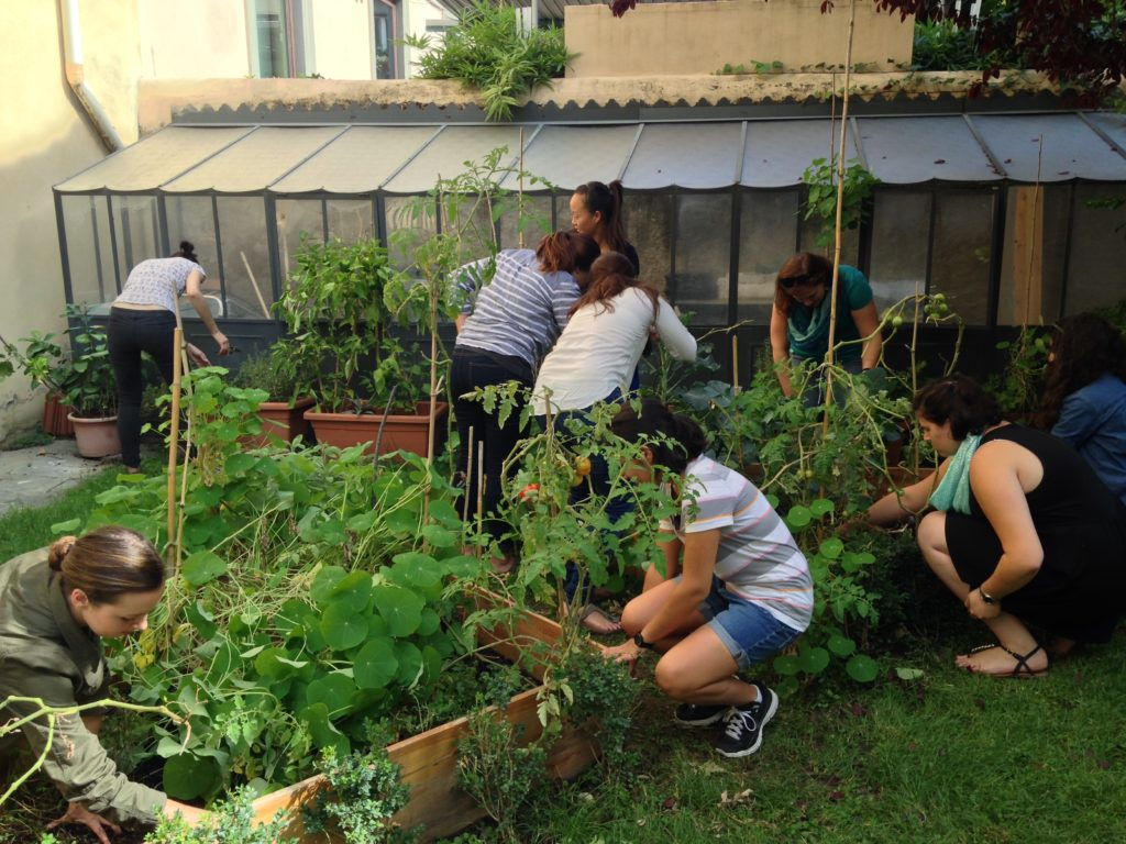 Students working in Syracuse Florence garden