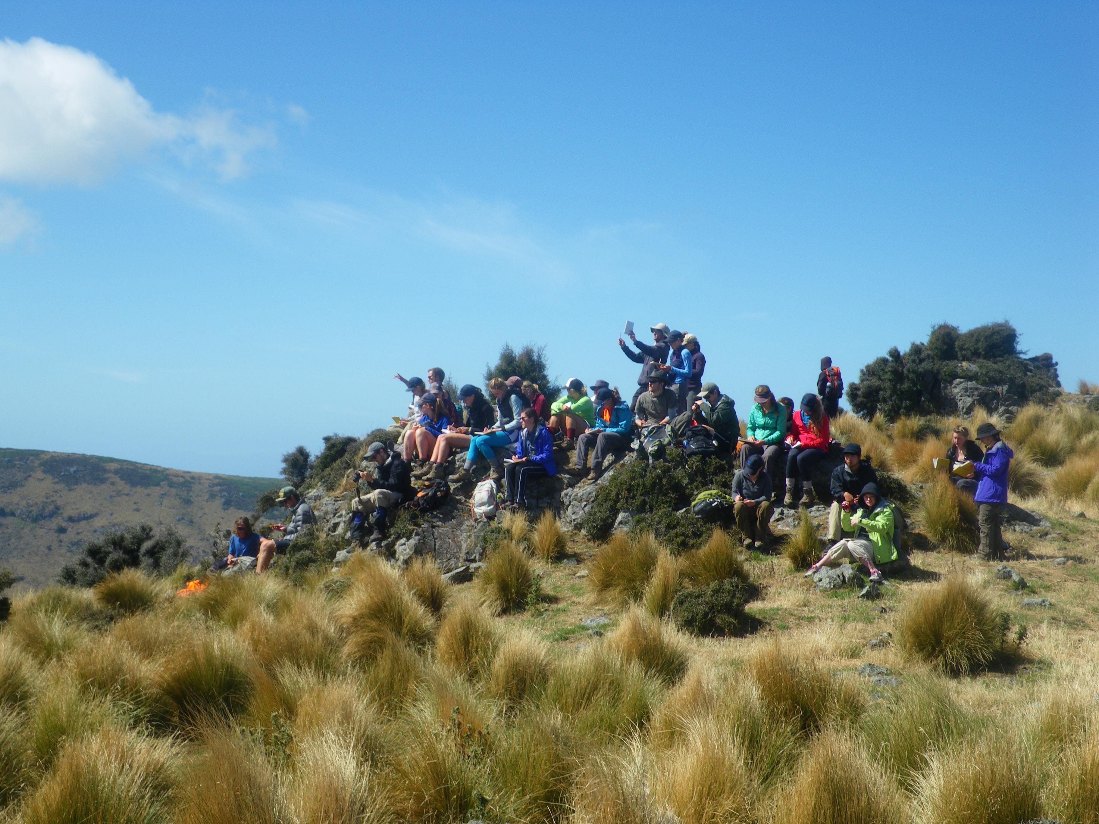 Field study in New Zealand