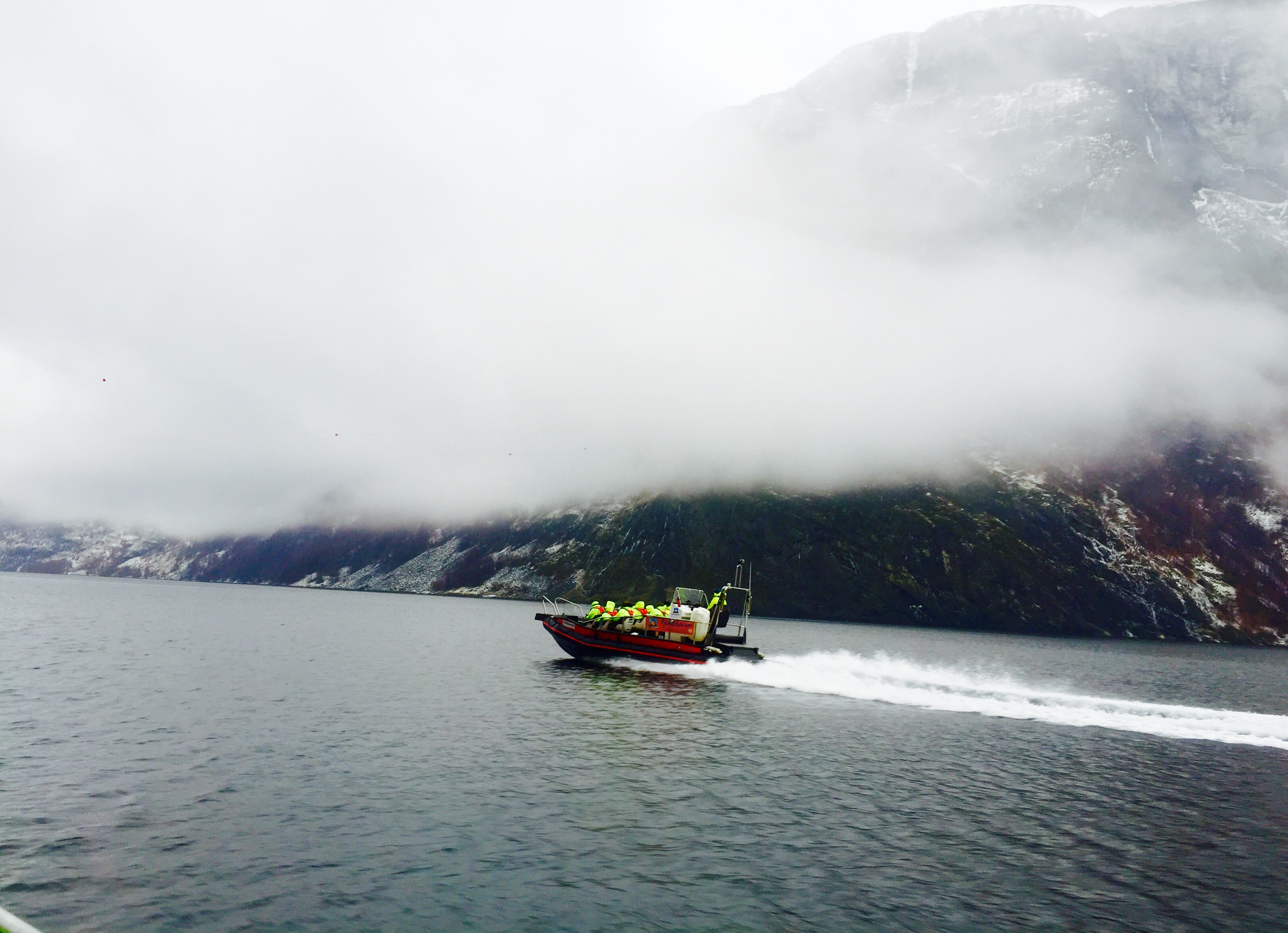 Fjord safari in Norway