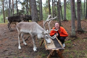 a student wearing bright orange crouches by a reindeer in the Arctic forest